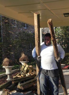 log removal in falls church, va